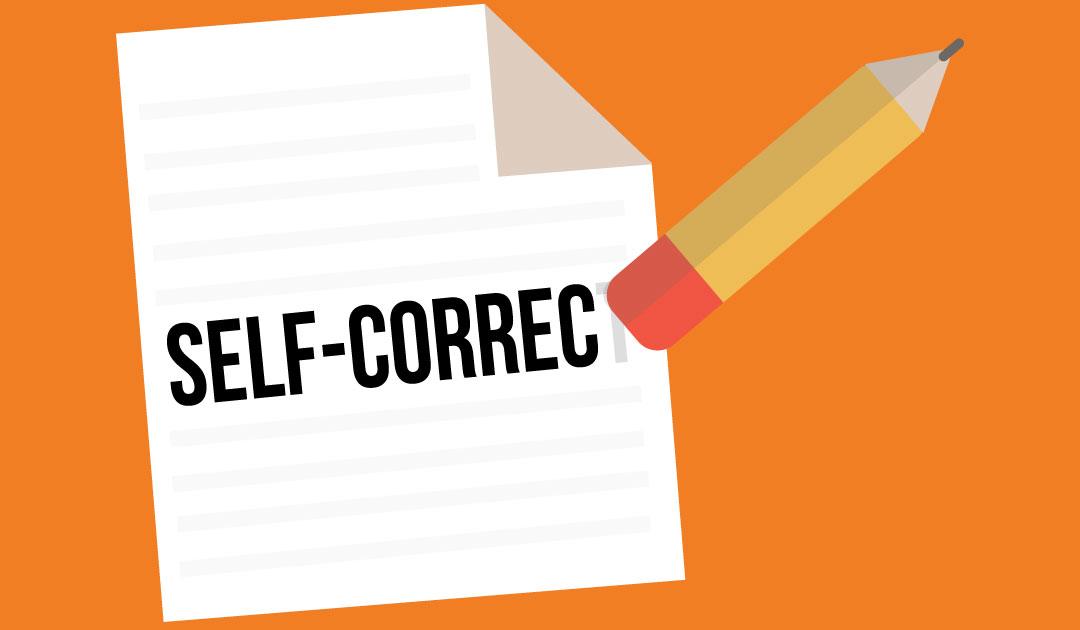 Plan-Self-correction