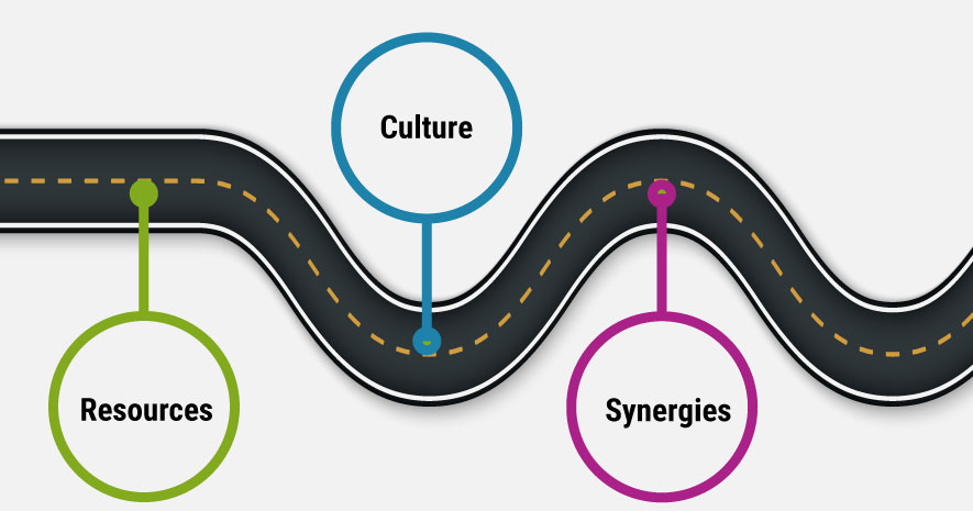 Synergies, Resources and Culture: A Roadmap to Strategic Partnerships